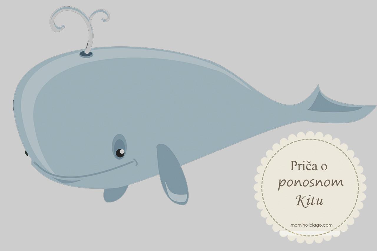 27 priča o usamljenom kitu mamino blago