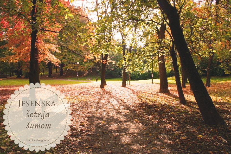 jesen u zagrebu šetnja park ribnjak